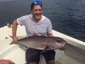 Southern Bluefin Tuna — Luis Diaz