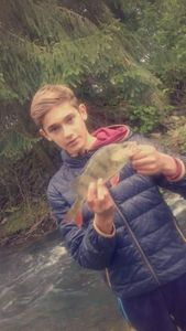 European Perch — Le Carna Lorrain