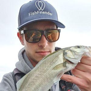 European Bass (Seabass) — Vincent Copaing