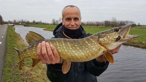 Northern Pike — Philippe  Habets
