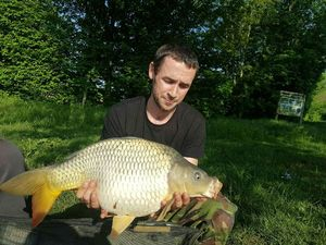 Common Carp — Kevin Berthollet