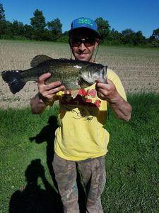 Black Bass (Achigan à Grande Bouche) — Leurriste de Charente Spining