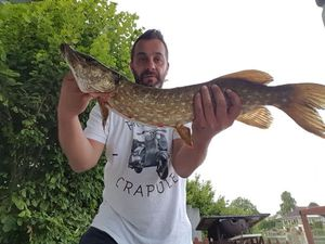 Northern Pike — Gilles POUILLY