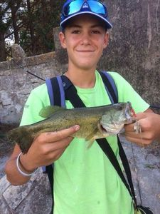Smallmouth Bass — Etienne Rouby