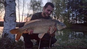 Common Carp — Sébastien Thirolle