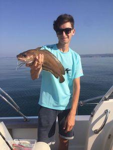 Mostelle de Roche — Lulu Fishing
