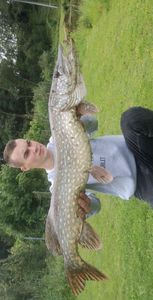 Northern Pike — Trystan Lenik