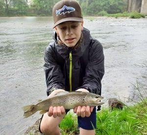 Brown Trout — FISH du 12