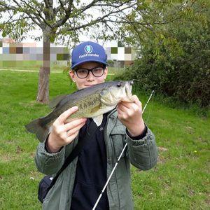 Largemouth Bass — Yugo Fishing