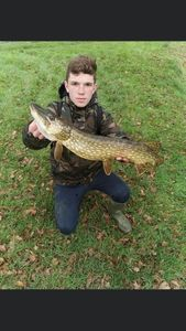 Northern Pike — logan prieto