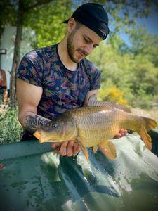 Common Carp — Thomas Garcia