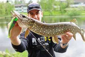 Northern Pike — Hugo Boyot