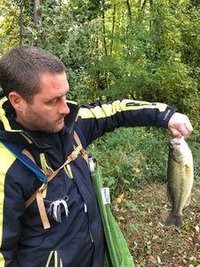 Largemouth Bass — Alex Bey