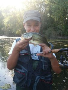 Largemouth Bass — Victor De Carvalho