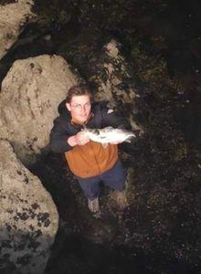 European Bass (Seabass) — Mewen Ezvan