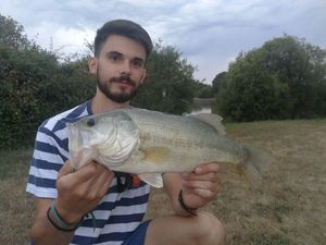 Largemouth Bass — Théo Sauzet