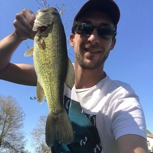 Largemouth Bass — Leslie Richard