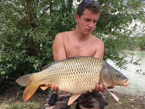 Common Carp — Corentin Collas
