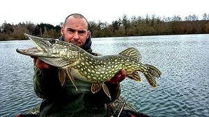Northern Pike — Yaya Vinc