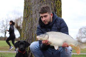 Common Carp — Tom Cermet