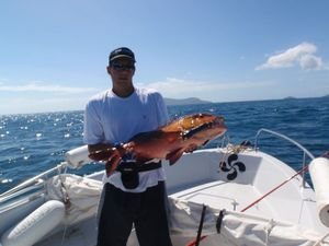 Two-spot Red Snapper