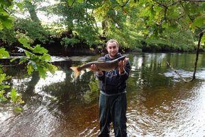 Atlantic Salmon (Landlocked) — Alexandre Moulin