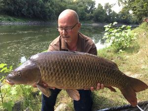 Common Carp — Laurent Heulin