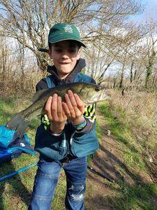Largemouth Bass — Seb Kayzer