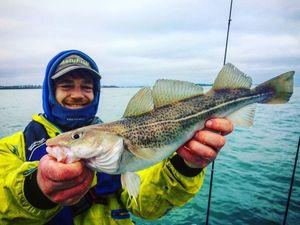 Morue de l'Atlantique (Cabillaud) — Yagofish