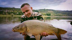 Common Carp — Arnaud  MORLET