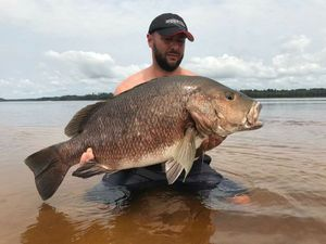 African Red Snapper — Michael Kilijanski