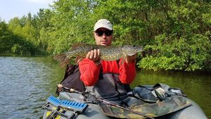 Northern Pike — Emmanuel Sailly