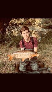 Common Carp — Antoine DEBS