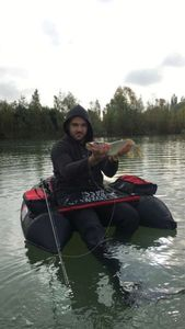 Northern Pike — Guillaume Did