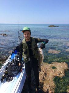 European Bass (Seabass) — Camille Tsn