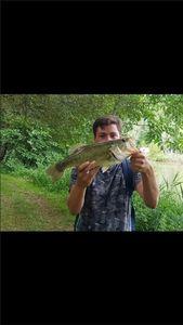 Black Bass (Achigan à Grande Bouche) — Johan Calmels