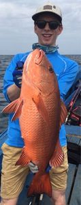 African Red Snapper — Marin Rossner