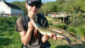 Northern Pike