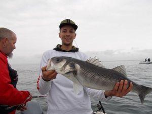 European Bass — Hakken Fishing