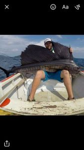 Pacific Sailfish — Olivier Leleu