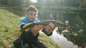 Northern Pike — Mathis Bzh