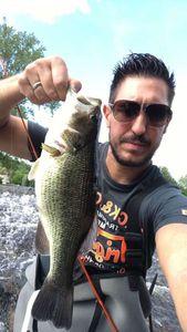 Black Bass (Achigan à Grande Bouche) — dod$ale fishing