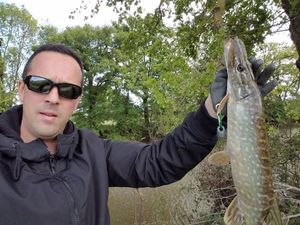 Northern Pike — francois azzopardi