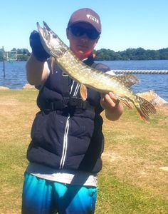 Northern Pike — maxou lbs