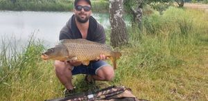 Common Carp — Toni Berritto