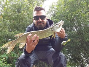 Northern Pike — Alan Lhotellier