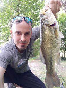 Smallmouth Bass — Frederic Meignen