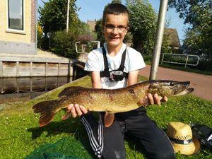 "Northern Pike — Joris Massire ""Fisheart"""