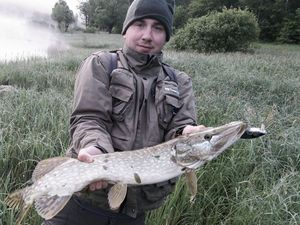 Northern Pike — Rudy Masson