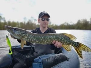 Northern Pike — Greg Teamtraillate